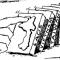 Domino theory (20TH CENTURY)